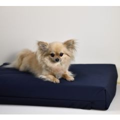 OUTLET - 2e KANS > Honden- en Katten kussen 70x100x10 cm